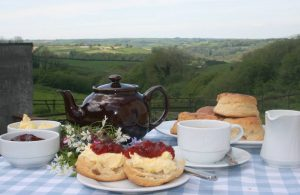 tea-devonshire-cream-tea